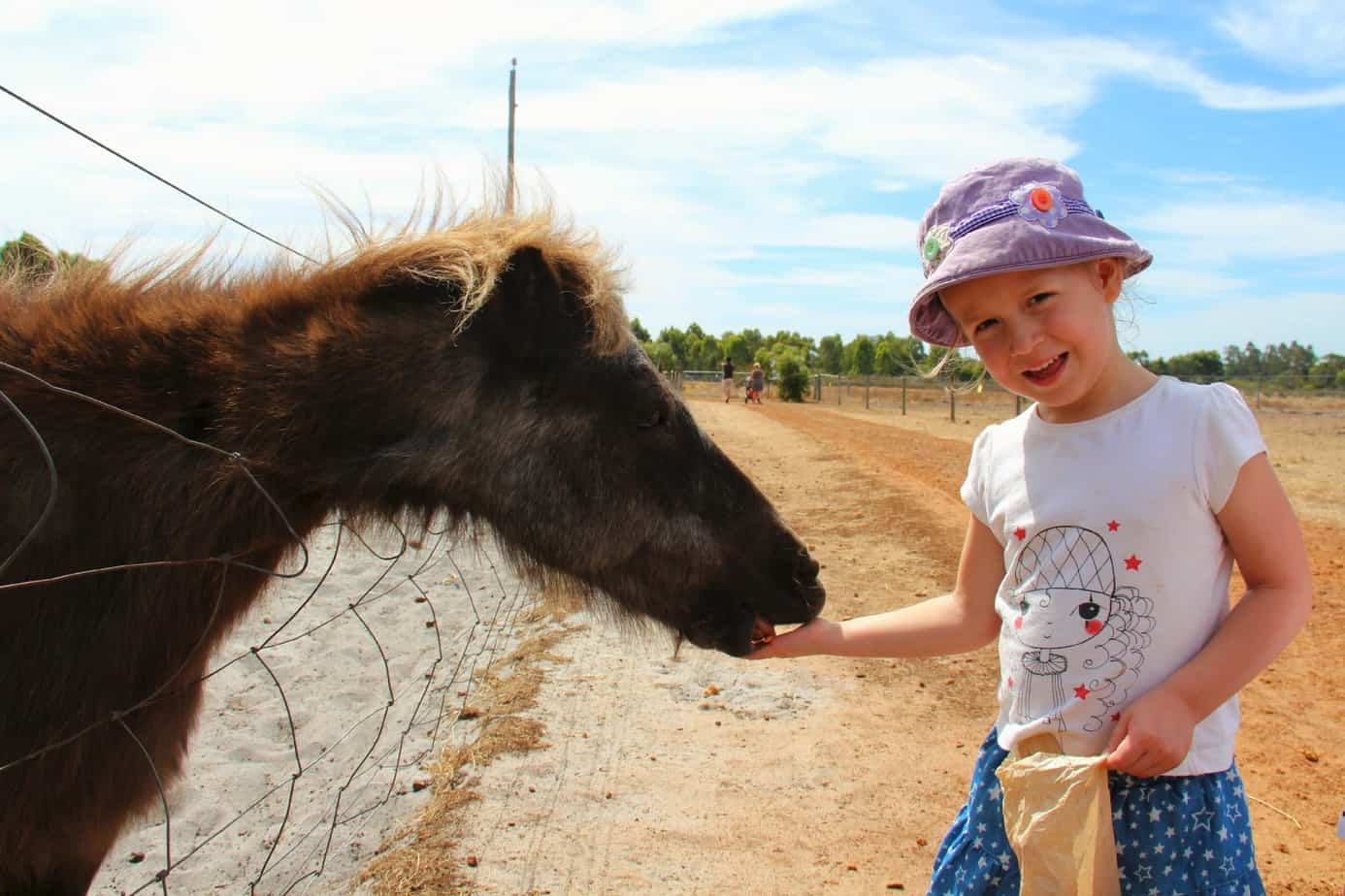 Things To Do In Margaret River With Kids Mum On The Move