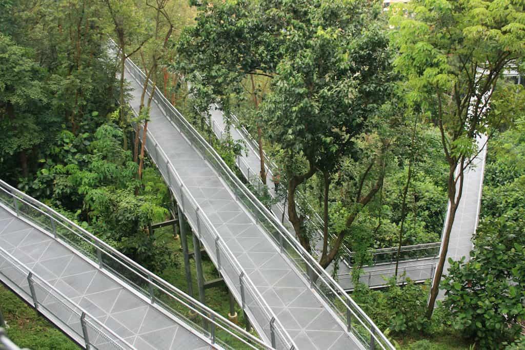 Southern ridges walk singapore