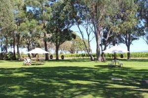 Child-friendly wineries Marlborough New Zealand
