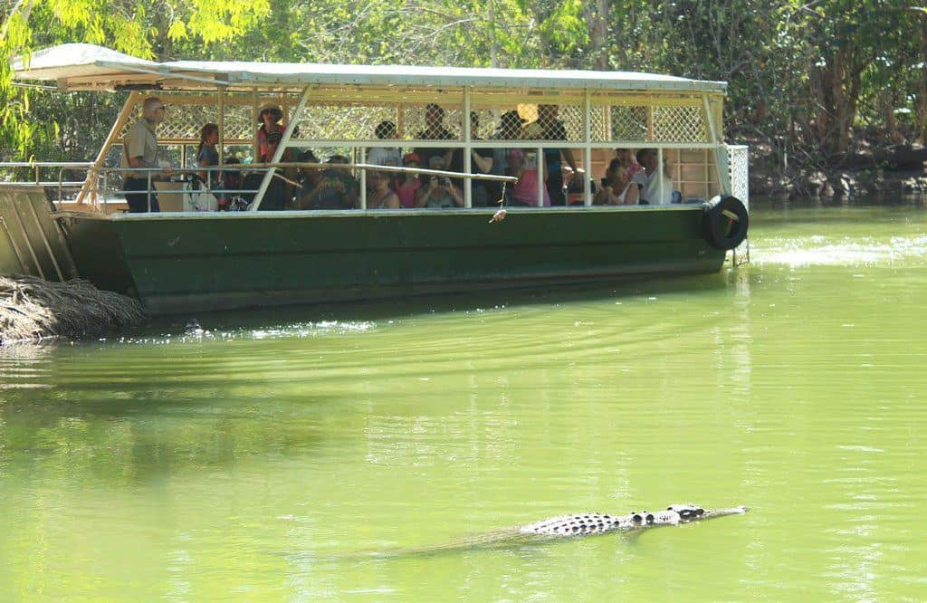 Hartleys Crocodile Adventures Cairns with kids
