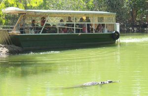 Hartleys Crocodile Adventures Cairns with kids