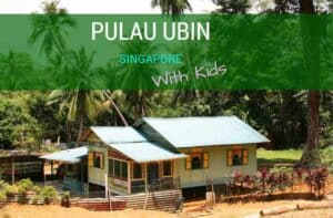 Pulau Ubin Singapore with kids