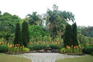 Botanic gardens Singapore for kids