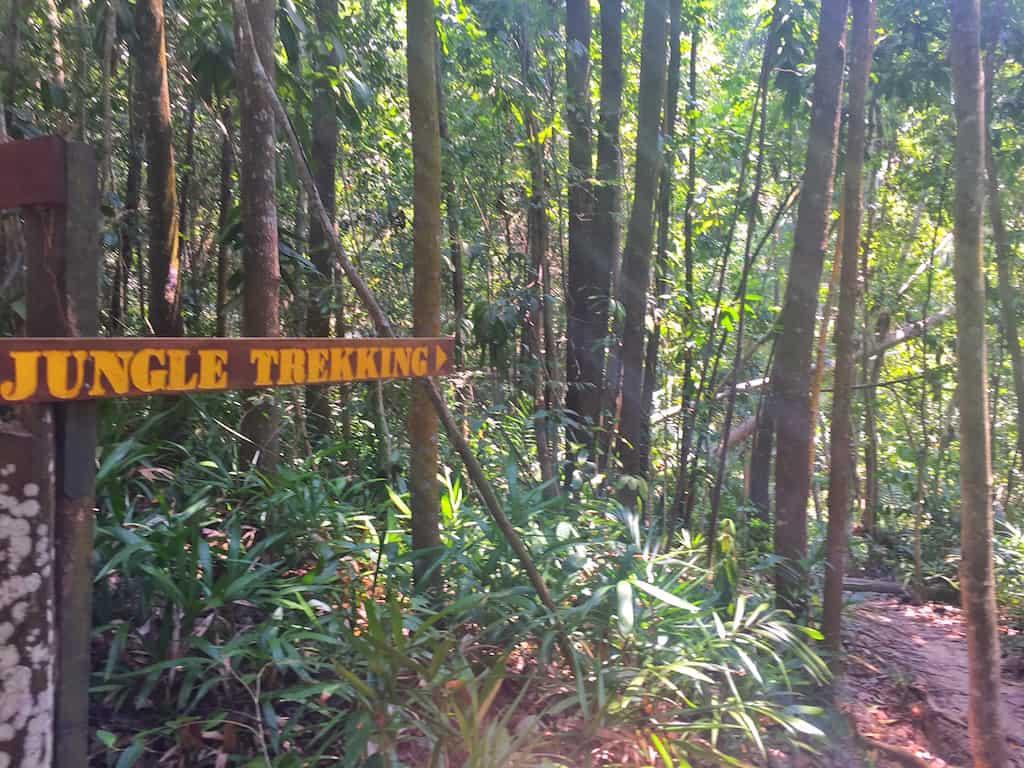 Manukan island jungle trek