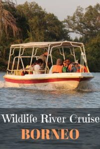 Wildlife River Cruise Borneo
