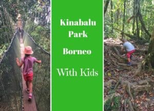 Visiting Kinabalu Park with Kids