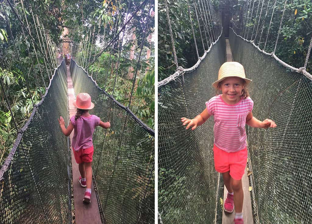 poring hot spring canopy walkway