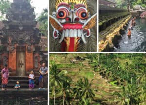 Things to do in ubud with Kids