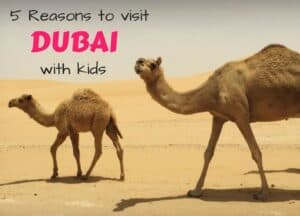 5 Reasons to visit Dubai with kids