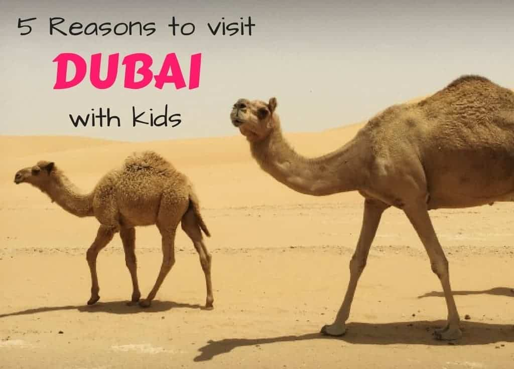 5 Reasons to visit Dubai with kids