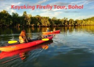 Kayaking firefly watching tour Bohol