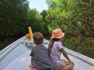 Mangrove Tour Langkawi with kids