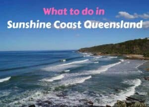 What do in Sunshine Coast Queensland