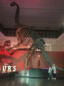 Australian Museum activities for kids in Sydney