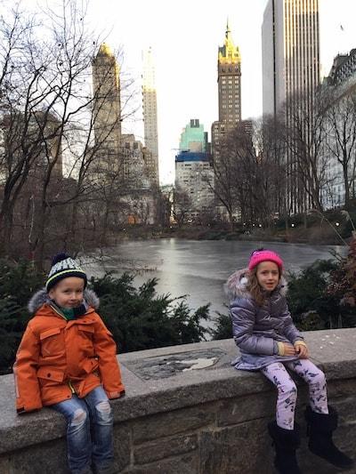 Central Park New York Christmas