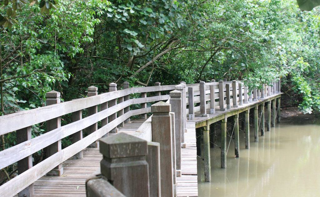 Sungei Buloh wetlands