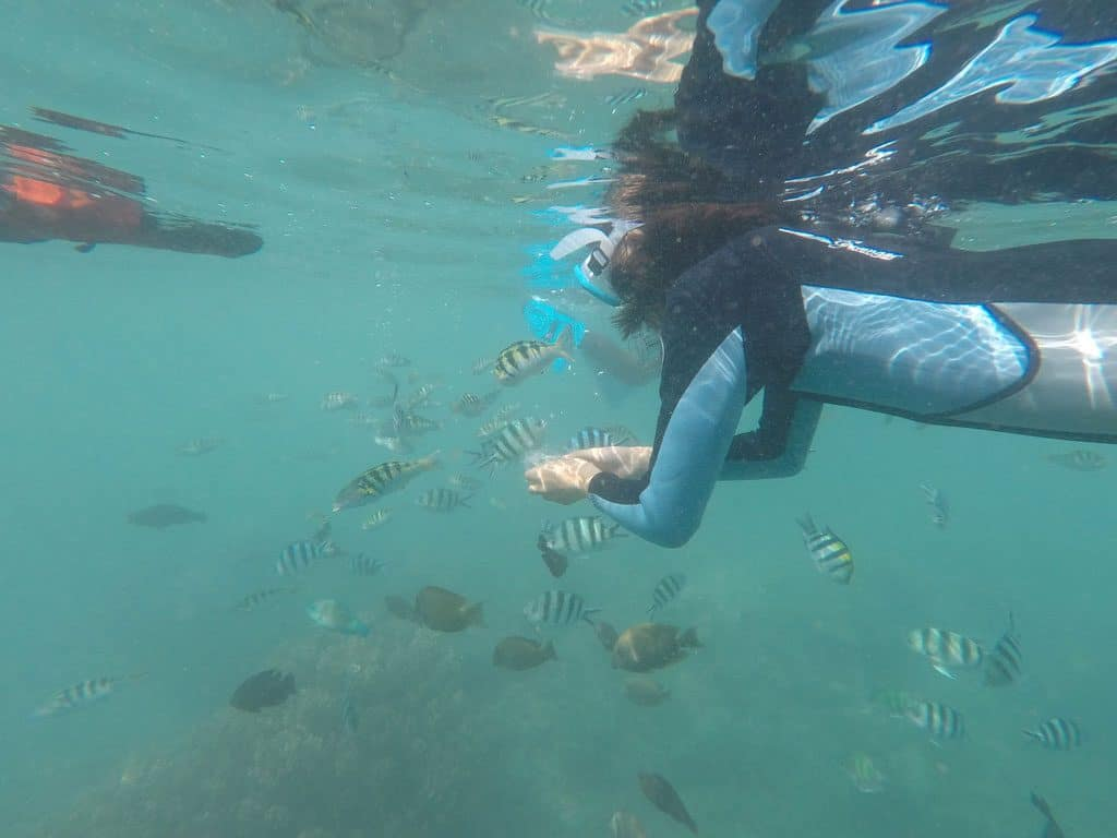 Snorkelling in Bali with Kids