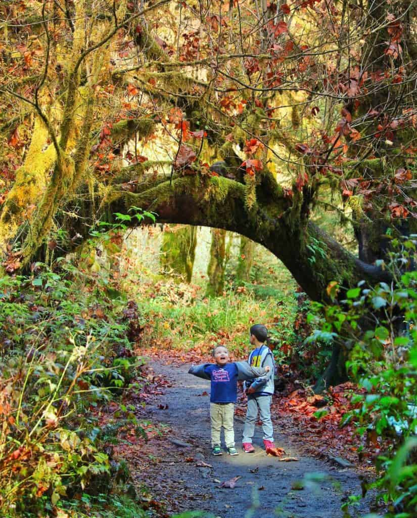 Kids in Olympic National Park