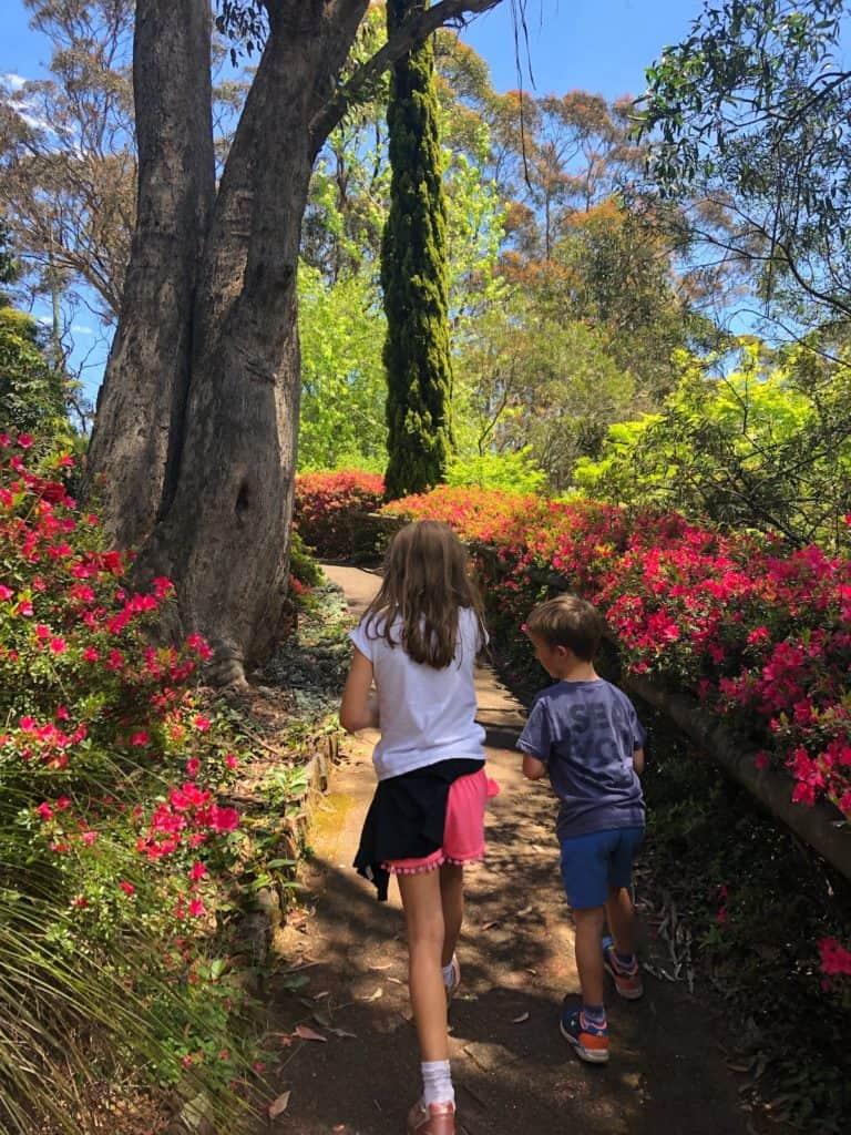 Children in Blue Mountains rhododendron garden