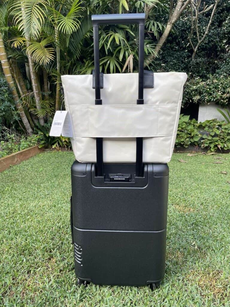 July Carry On Suitcase and Carry All Tote