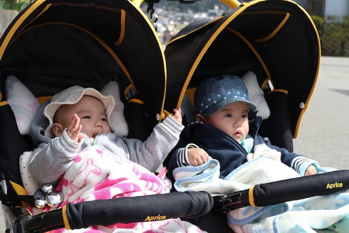 Twin babies in double stroller